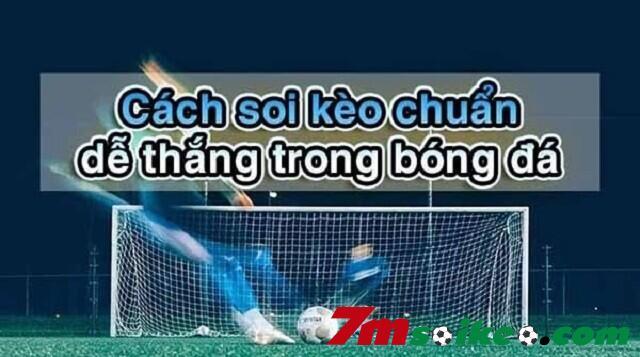 Nguoi Choi Can Soi Keo Bang Mot Cai Dau That Lanh Va Tam Ly Tot Nhat 1